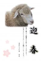 羊の顔と桜のワンポイント